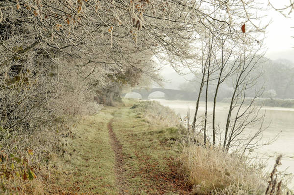 Suir Photograph - Ice And Mist by Joe Ormonde
