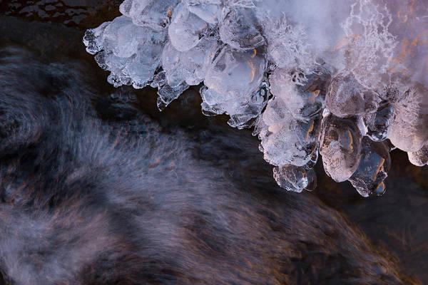Photograph - Ice Berries by Deborah Hughes