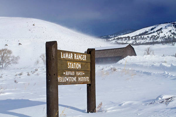 Photograph - Ice Cold Lamar Valley by Mark Miller