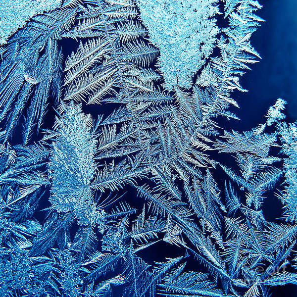 Ice Crystals Photograph - ice by HD Connelly