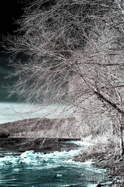 Photograph - Ice On The Delaware River Infrared by John Rizzuto