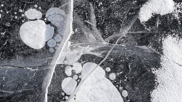Photograph - Ice Patterns Xviii by Steven Ralser
