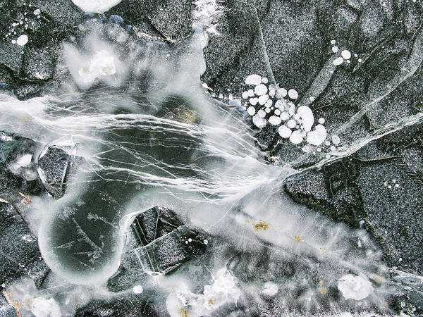 Photograph - Ice Patterns Xxxiii by Steven Ralser