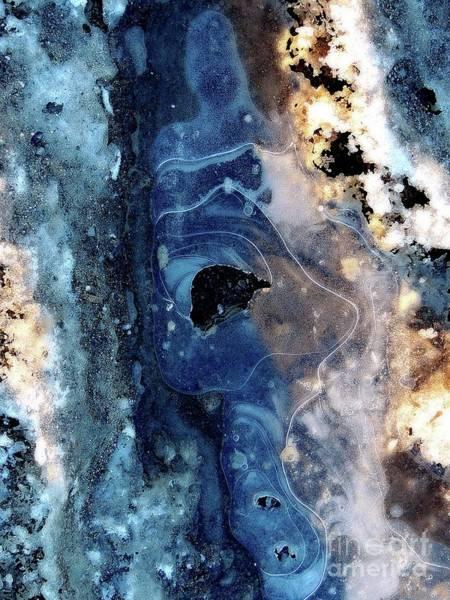 Photograph -  Ice Siren by Marcia Lee Jones
