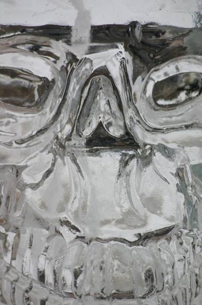 Wall Art - Photograph - Ice Skull  by Shawna Dockery