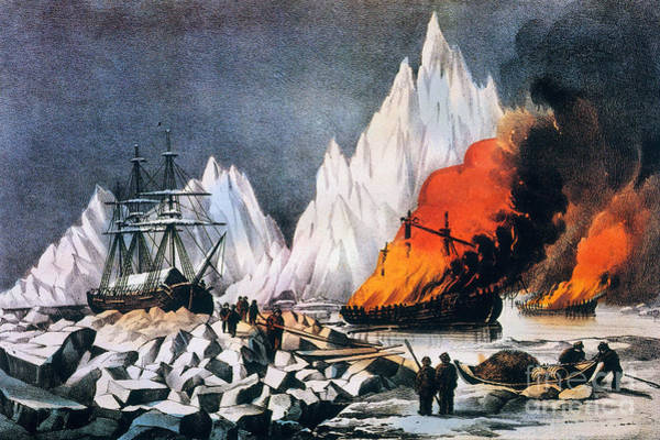 Painting - Ice Trapped Whalers by Granger