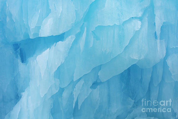 Photograph - Iceberg by Arterra Picture Library