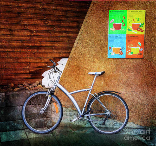 Photograph - Iceland Soup Bicycle by Craig J Satterlee