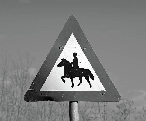 Wall Art - Photograph - Icelandic Horse Crossing Sign Bw by Betsy Knapp