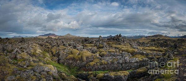 Mossy Photograph - Icelands Mossy Volcanic Rock by Michael Ver Sprill