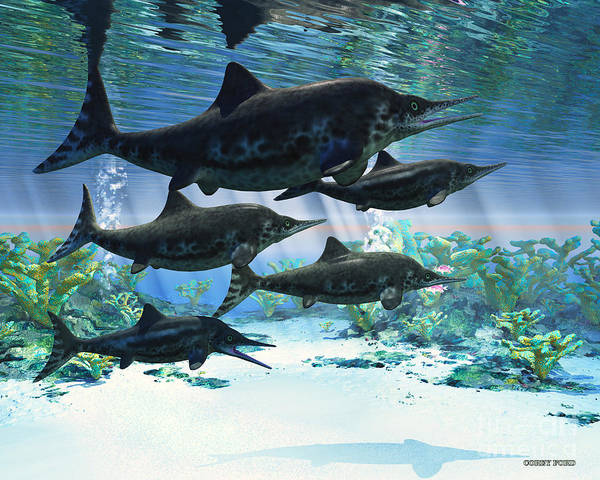 Vertebrate Painting - Ichthyosaur by Corey Ford