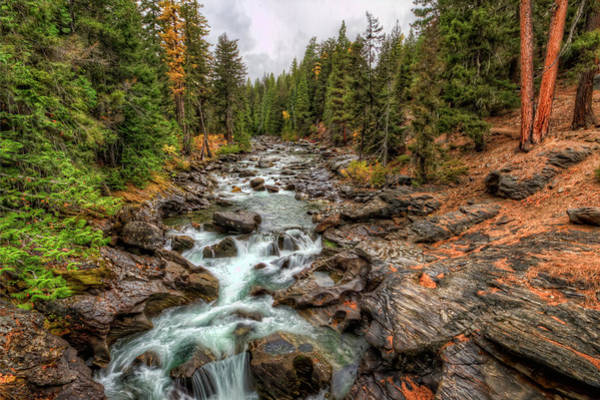Photograph - Icicle Gorge 2 by Brad Granger