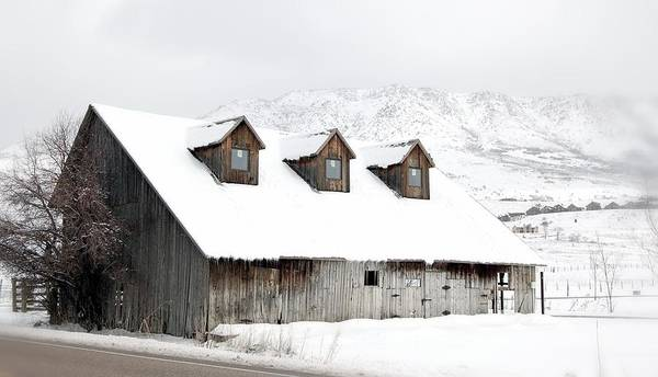 Barn Snow Painting - Icicles At Work by Shannon McMannus