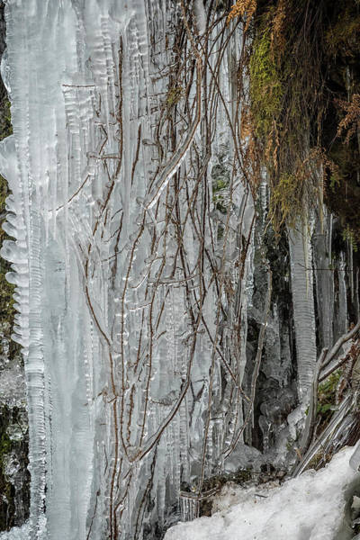 Photograph - Icicles, No. 1 by Belinda Greb
