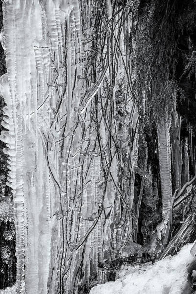 Photograph - Icicles, No. 1 Bw by Belinda Greb
