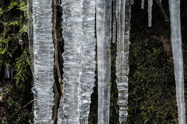 Photograph - Icicles, No. 4 by Belinda Greb