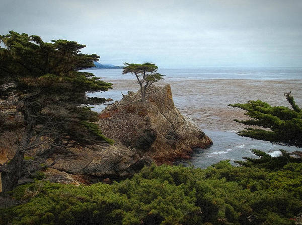 Photograph - Icon Of Pebble Beach by Glenn McCarthy Art and Photography