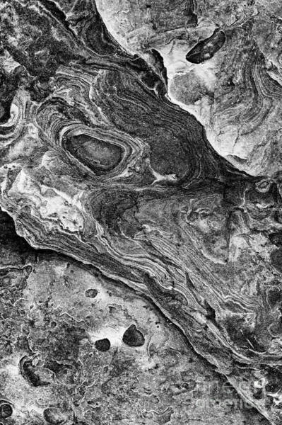 Rock Face Photograph - ICU by Tim Gainey