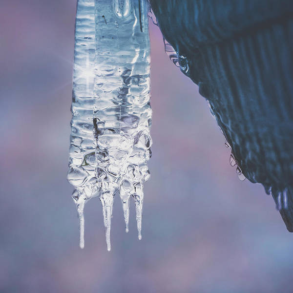 Photograph - Icy Beauty by Ari Salmela