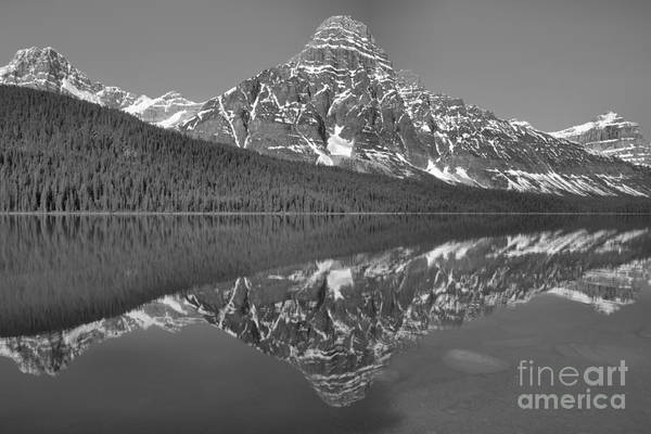 Photograph - Icy Blue Mt Chephren Reflections Black And White by Adam Jewell