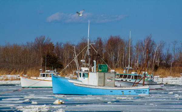Photograph - Icy Boats by Brian MacLean