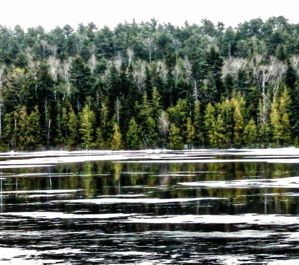 Fanny Photograph - Icy Boreal Reflections by Scott Wendt Tom Wierciak