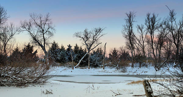 Photograph - Icy Pond #1 by Richard Smith
