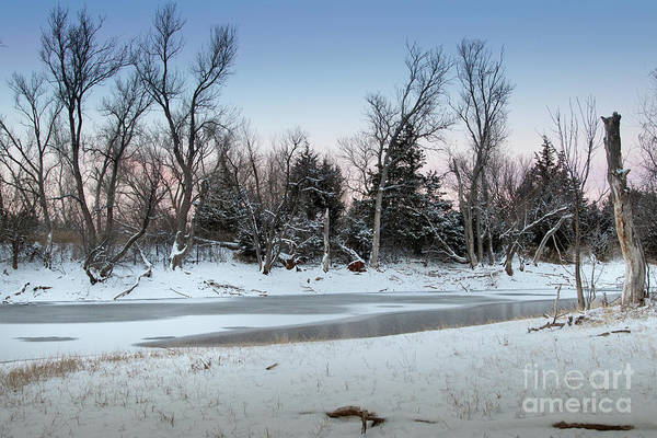 Photograph - Icy Pond #2 by Richard Smith