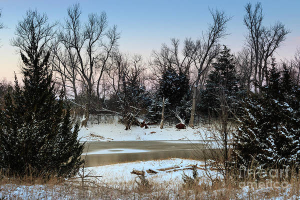 Photograph - Icy Pond #4 by Richard Smith