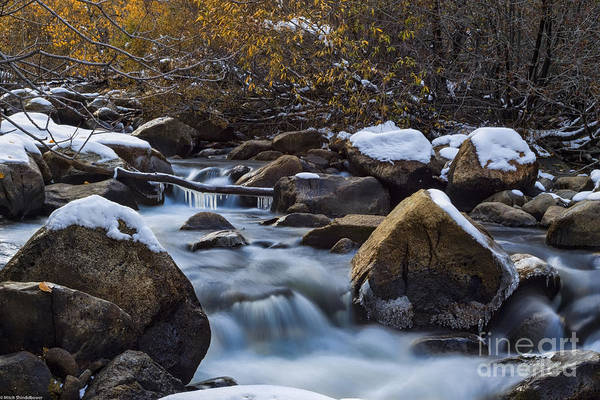 Icy Leaves Wall Art - Photograph - Icy River Autumn by Mitch Shindelbower