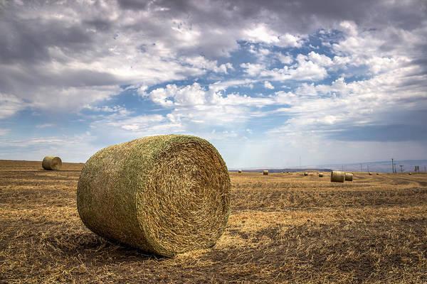 Lewiston Photograph - Idaho Hay Bale by Brad Stinson