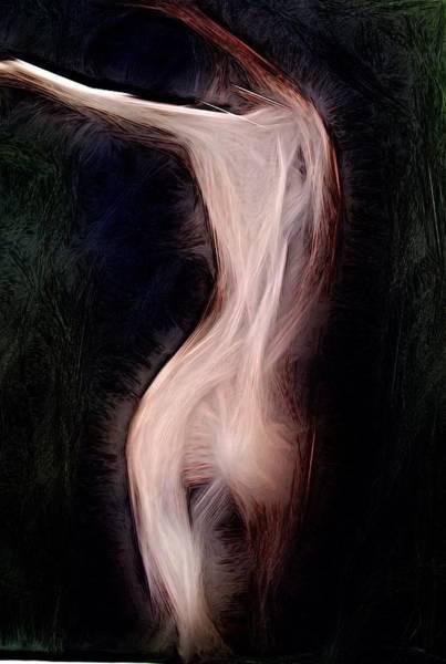 Digital Art - Ideaalinen by Jeff Iverson