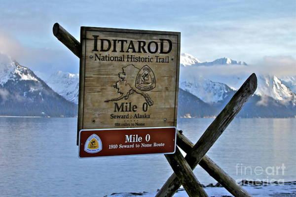 Wall Art - Photograph - Iditarod by Rick  Monyahan