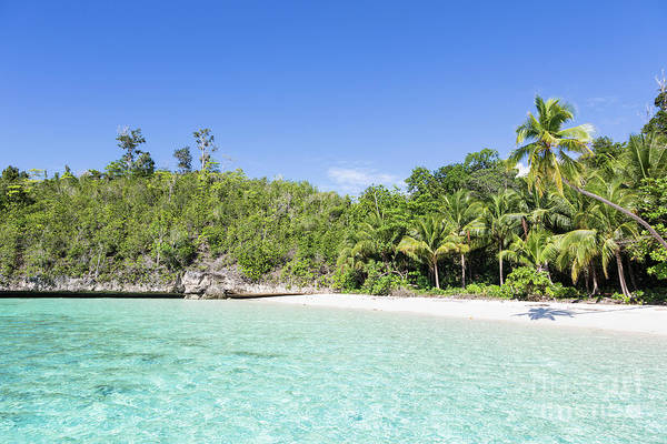 Photograph - Idyllic Beach In Togian Island In Sulawesi by Didier Marti