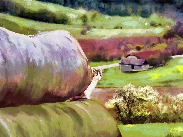 Painting - Idyllic Rural Austria by Menega Sabidussi