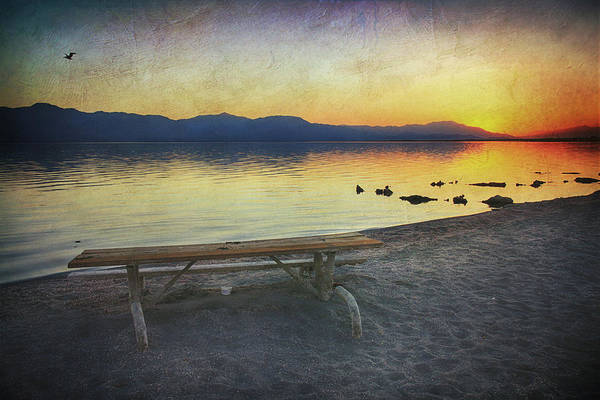 Picnic Tables Photograph - If Only I Knew Then by Laurie Search