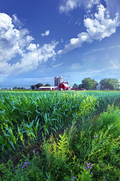 Wall Art - Photograph - If Seasons All Were Summers by Phil Koch