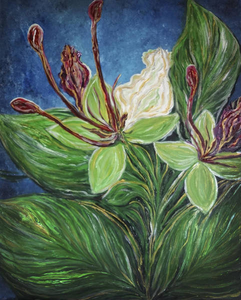 Painting - Ifit Flower Guam by Michelle Pier