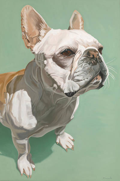 French Bulldog Painting - Ignatius by Nathan Rhoads