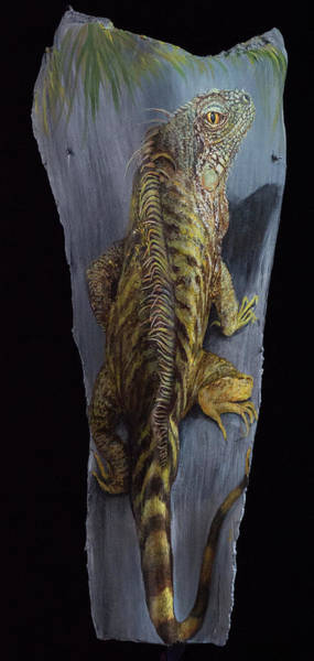 Painting - Iguana Be A Great Day by Nancy Lauby