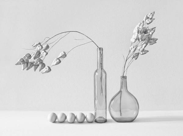 Vases Photograph - .....~ii~ by Dimitar Lazarov -