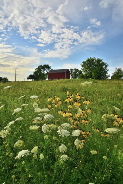 Photograph - Illinois Farm Scene by Ray Mathis