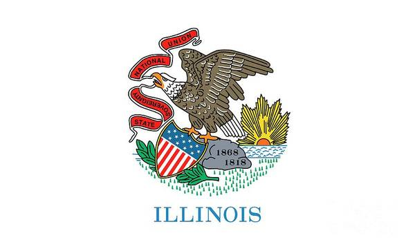 Painting - Illinois State Flag by American School