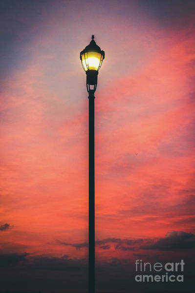 Wall Art - Photograph - Illuminate The Night by Colleen Kammerer