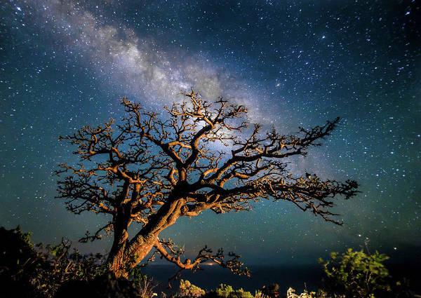 Nightscape Photograph - Illuminated by Drew Sulock