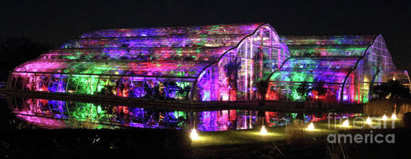 Photograph - Illuminated Glasshouse Wisley by Julia Gavin