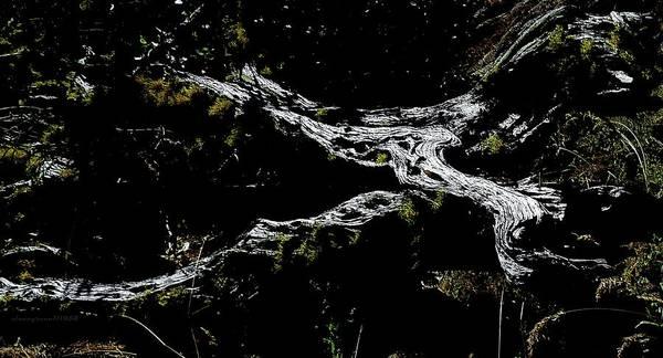 Digital Art - Illuminated by Vincent Green