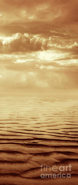 Beach Sand Photograph - Illusion Never Changed Into Something Real by Dana DiPasquale