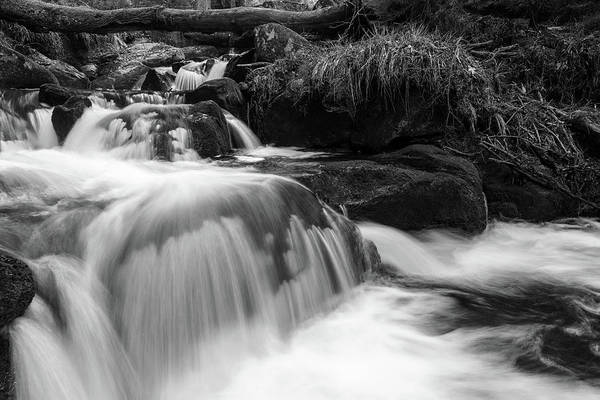 Photograph - Ilse, Harz Monochrome  by Andreas Levi