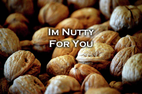 Photograph - Im Nutty For You Card by Lesa Fine